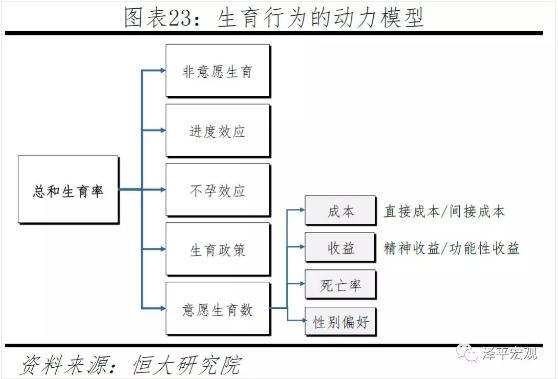 【分享】2019中国生育报告